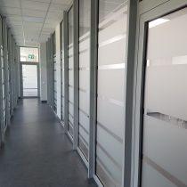 Vitrinų apipavidalinimas - HANSA FLEX langų klijavimas šerkšno plėvele