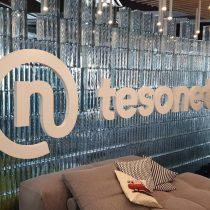 TESONET logotipas pagamintas iš putplasčio